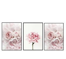 (Reduced Price) A4 or A5 Home Wall Decor Set Of Three Pink Flower Prints