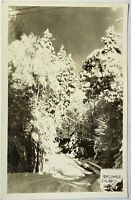 Idyllwild California CA RPPC Postcard 1948 Snow Scenery Trees Real Picture