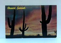 Arizona Sunset Giant Saguaros Cacti Postcard