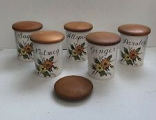 Vintage Crown Devon Spice Jars X5