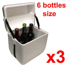 x3 6L Polystyrene styrofoam padded foam cooler ice picnic box icebox planter