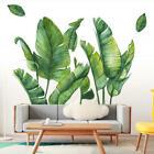 Tropical Leaves Green Plant Wall Sticker Pvc Decal Nursery Art Mural Home Decor