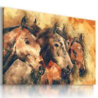 DRAWING PAINTING HORSES Animals Pets PRINT Canvas Wall Art Picture AN333 MATAGA