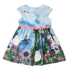 Kids Toddler Baby Sleeveless Sundress Girls Chiffon Vest Tutu Dress Top Skirts