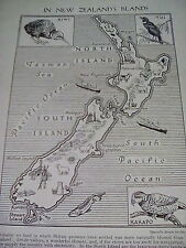 New Zealand Islands Map Animals Industries 1 Small Page 1950's to frame?