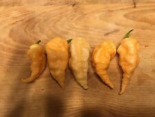 100+ SUPER HOT SEEDS GHOST COLLECTION PEACH CHOCOLATE RED  BHUT JOLOKIA