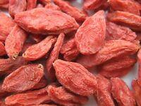 Organic Goji berries Wolfberry,Wholesale China NingXia Lycii Gou qi zi Top Berry
