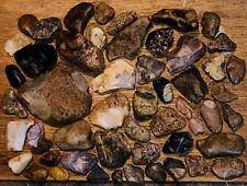 Prehistoric Artifacts
