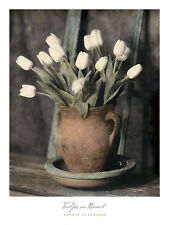 Tulips on Bench Laurie Eastwood  Art Print Poster 18x24