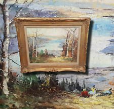 Autumn Sescape Landscapes (Chiemsee?) . Original Oil Painting Signed,