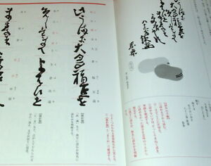 The book which can read Japanese Break Calligraphy Kanji Hiragana Japan #0884