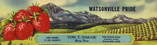 OLD FRUIT CRATE LABEL STRAWBERRY VINTAGE WATSONVILLE PRIDE LANDSCAPE MOUNTAIN