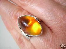 835 Silber Ring Bernstein Fischland Pressbernstein Honig 5,0 g/16,8 mm Amber
