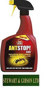 Home Defence Ant Stop Gun Pest RTU 800ml