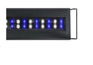 "Current-USA Model #4125-A:  24"" - 36"" ORBIT IC Accessory Light (Refurbished)"