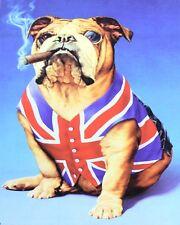 """10"""" x 8"""" BRITISH BULLDOG UNION JACK FLAG CHURCHILL CIGAR METAL PLAQUE SIGN N349"""