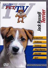 Jack Russell Terrier - Meister PETz TV *DVD*NEU* Ratgeber - Hund