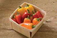 Fresno Pepper Mix Color Blend Capsicum Annuum Hot Chili Pepper Seeds 25 PCS