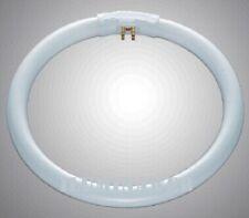 Tubo Fluorescente circular T5 22w 183mm 4 pin GZ10Q Luz Blanca 6400k