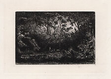"Amazing PHILIP GILBERT HAMERTON Original 1800s Etching ""The Forest"" SIGNED COA"