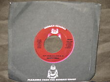 "Addrisi Bros. ""Slow Dancin'Don't Turn Me On"" 45 Single PROMO Mono/Stereo"