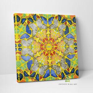 Colourful Butterflies Abstract Canvas Art Pop Art Wall Art Print Picture -D134