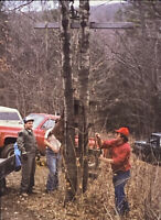 Vintage Photo Slide 1986 Deer Camp Hunters