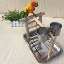 Pet Parrots Playstand Bird Playground Perch Gym Training Stand Bird Toys