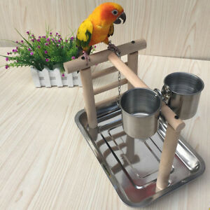 Pet Parrots Playstand Bird Playground Perch Gym Training Stand Bird Toys