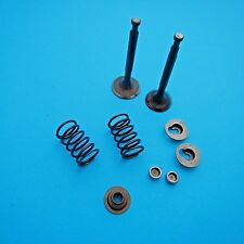 Genuine Valve Kit Assembly Fits Lifan 152F Loncin 152F Chinese Engine