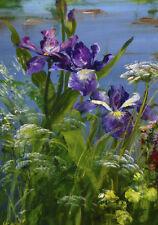 Iris Flowers Painting Garden Shabby Chic Provincial Canvas Print