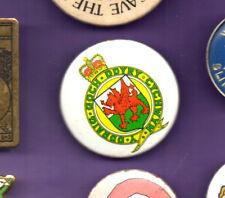 Cardiff Coat of Arms -'Y DDRAIG GOCH DDYRY CYCHWYN' - Button Badge 1980's