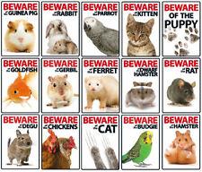 Artículos rata de plástico para roedores
