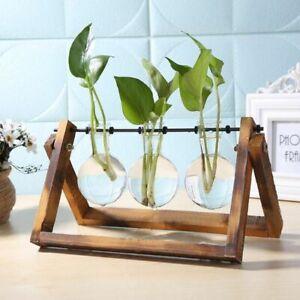 Flower Vase Table Desktop Plant Bonsai Flower Pot Hanging Pots with Wooden Tray
