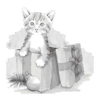 SPELLBINDERS 3D Shading Cling Stamp FURRY GIFT DSC-008 Cat Kitten 2.75 x 4.00 in