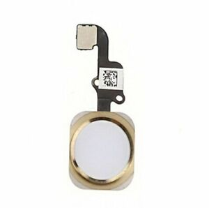 For iPhone 6 / 6 Plus Home Button on Flex - White / Gold