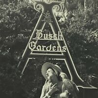 1960s 1970s Anheuser Busch Gardens Woman With Parrots SmileTampa Florida Photos