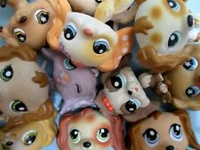 Littlest Pet Shop Set Lot 2 RANDOM Cocker Spaniel Puppy Dogs Authentic+Gift Bag!