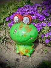Solar Gartenleuchte Frosch mit leuchtenden Augen 2 LED Solarlampe farbig 457