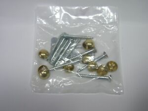 10 x Mirror Screws with 12.5mm dia Brass Dome Caps