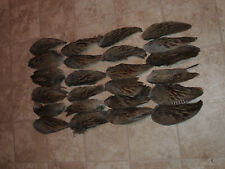 24 Pheasant Wings, Hunting Dog Training, Crafts