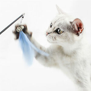 Cat Play Toy Feather Teaser Wand Interactive Stick Kitten Pet Fun Retractable