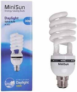 Minisun 30W 6500k Daylight Energy Saving Spiral Table/ Floor Bulb Lamp BC B22