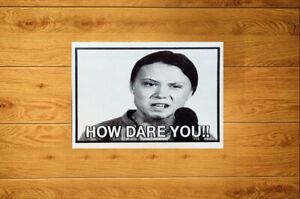 How Dare You Stickers (10-100) - Greta Thunberg Environmental Climate Awareness