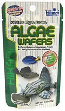 Hikari Algae WafersTropical Catfish Plecos Rapidly Sinking Disc Fish Food .70 oz