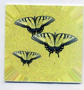 Pk OF 18 WESTERN TIGER SWALLOWTAIL BUTTERFLY GIFT NOTELETS WITH NO ENVELOPES