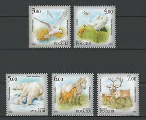 Russia 2006 Fauna Animals, Birds, Horses 5 MNH stamps