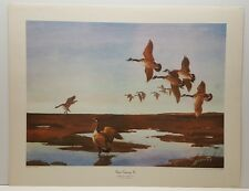 Vintage Lithograph Art Print James Sessions Geese Coming In