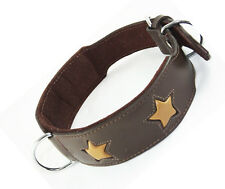 18-22 pouces brown tan étoiles Doberman staffordshire cuir Labrador Chien Collier