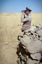 COLOR WWII Photo Erwin Rommel Afrika Corps WW2 /2089